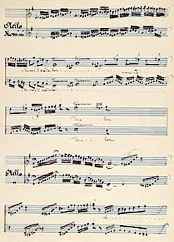 The Operatic Cadenza