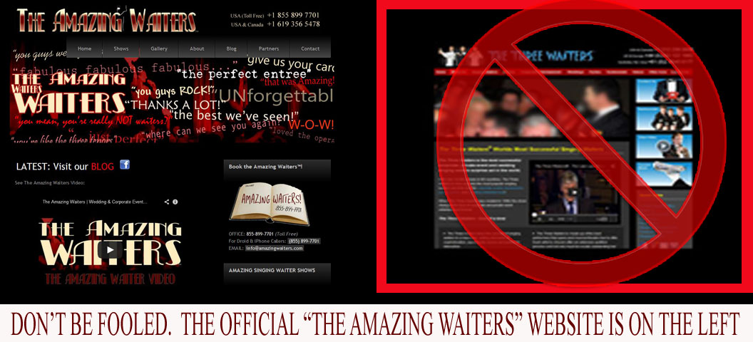 The Amazing Waiters official website is on the left.  Don't be tricked into being diverted through another domain.